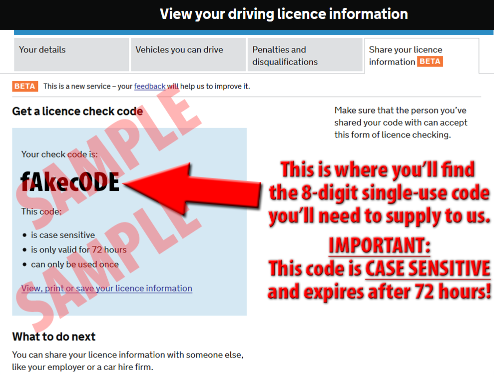 DVLA paperless driving licence explanation 04